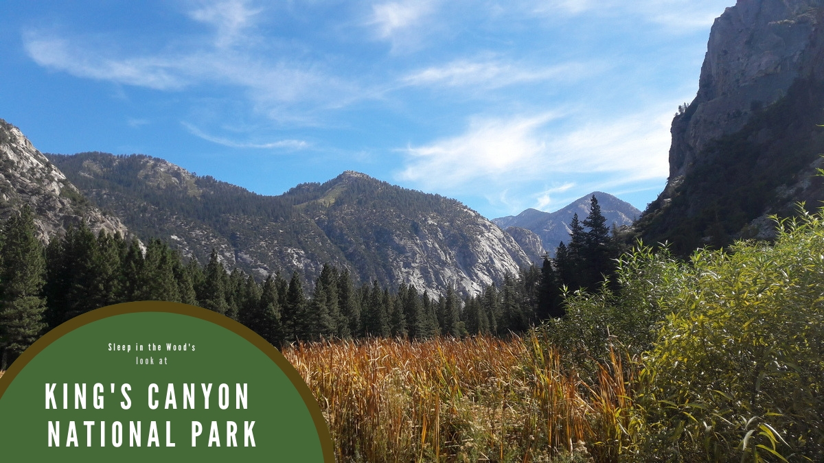 where to camp in Kings Canyon National Park